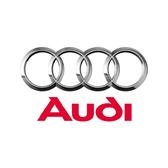 Audi Buji Kablosu
